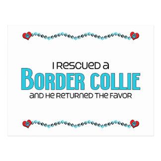 Rescaté un border collie (el perro masculino) postal