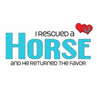 Rescaté un caballo el caballo masculino esculturas fotográficas