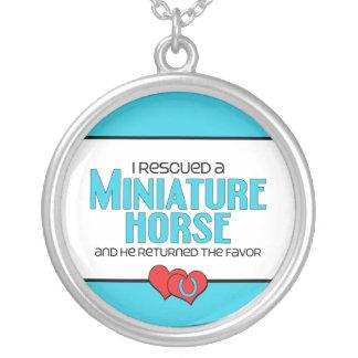 Rescaté un caballo miniatura (el caballo colgante redondo