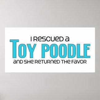 Rescaté un caniche de juguete el perro femenino posters