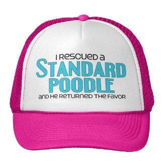 Rescaté un caniche estándar (el perro masculino) gorra
