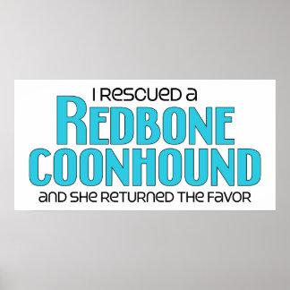 Rescaté un Coonhound de Redbone (el perro femenino Posters
