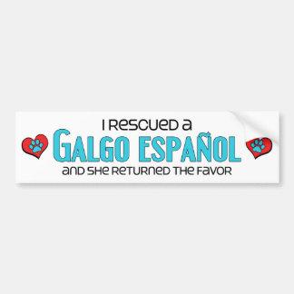 Rescaté un Galgo Español (el perro femenino) Pegatina Para Auto