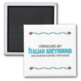 Rescaté un galgo italiano (el perro femenino) imán cuadrado