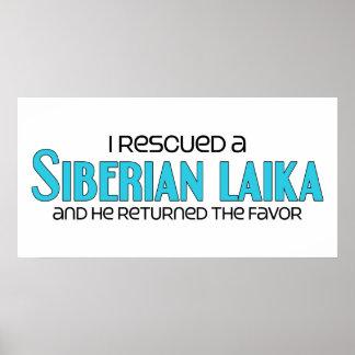 Rescaté un Laika siberiano el perro masculino Poster