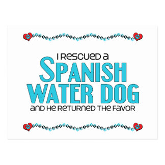 Rescaté un perro de agua español (el perro tarjetas postales