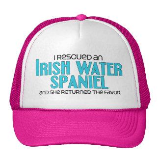 Rescaté un perro de aguas de agua irlandesa (el pe gorro de camionero