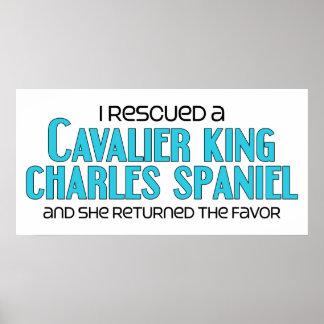 Rescaté un perro de aguas de rey Charles arrogante Posters