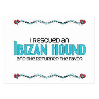 Rescaté un perro de Ibizan el perro femenino Postal