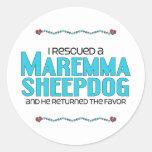 Rescaté un perro pastor de Maremma (el perro Pegatinas Redondas