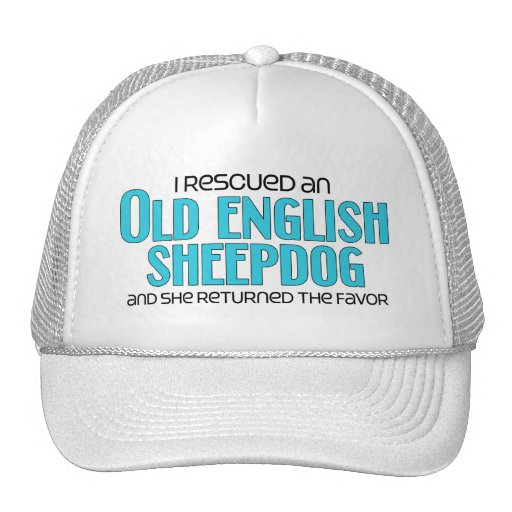 Rescaté un perro pastor inglés viejo (el perro fem gorros bordados