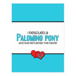 Rescaté un potro del Palomino (el potro femenino) Postales