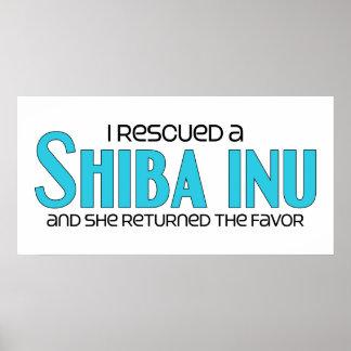 Rescaté un Shiba Inu (el perro femenino) Póster