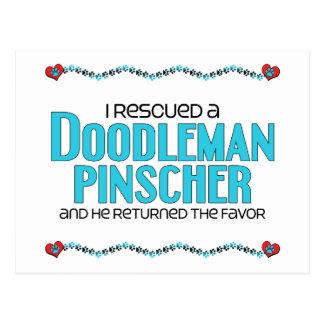 Rescaté una adopción del perro del Pinscher de Postal