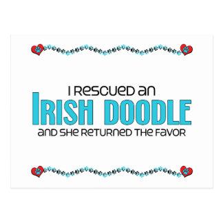Rescaté una adopción femenina irlandesa del perr postales
