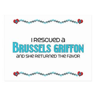 Rescaté una Bruselas Griffon (el perro femenino) Postal