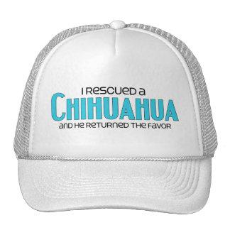 Rescaté una chihuahua (el perro masculino) gorras
