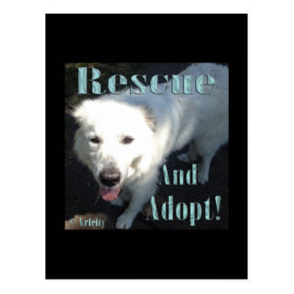 ¡Rescate y adopte! Tarjeta Postal