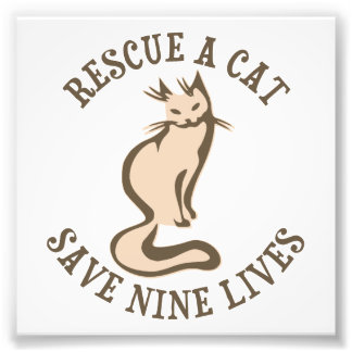 Rescue A Cat Save Nine Lives Photo Print