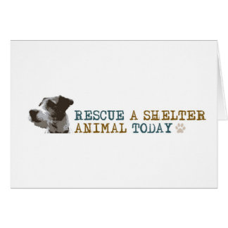 Rescue a Shelter Animal Today Card