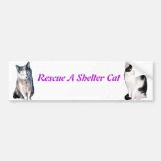 Rescue A Shelter Cat Bumper Sticker