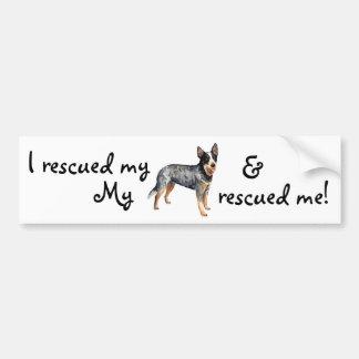 Rescue ACD Bumper Sticker