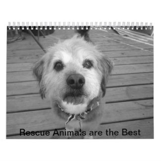 Rescue animals Calendar