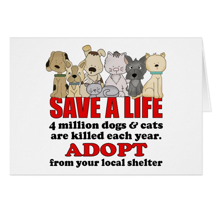 Rescue Animals Card