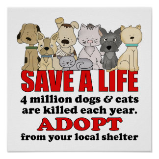 Rescue Animals Poster