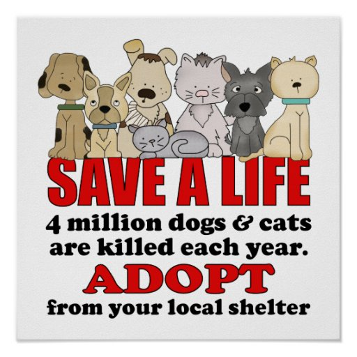 Rescue Animals Posters