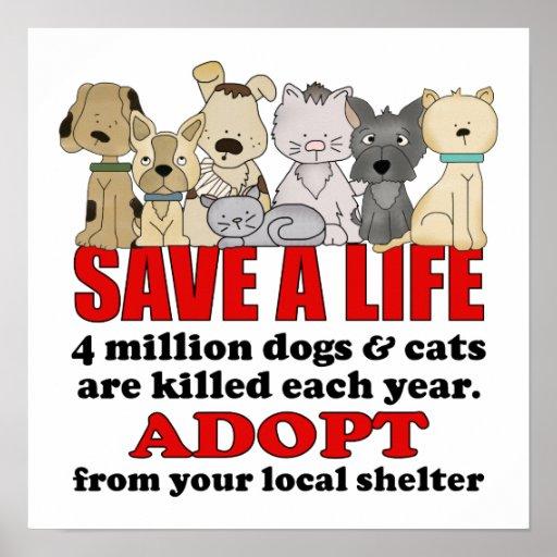 Rescue Animals Poster