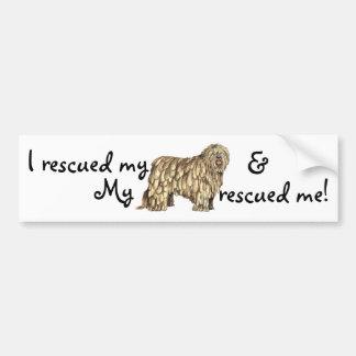 Rescue Bergamasco Bumper Sticker