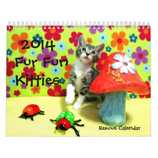Rescue Cat / Kitten Calenda -- NEW FOR 2014! Calendar