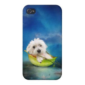 Rescue dog, Bindi iPhone 4 Cover