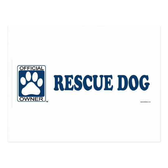 RESCUE DOG_blue Postcard