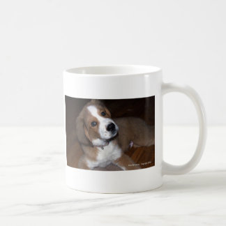 Rescue Dog Buddy Implores You Classic White Coffee Mug
