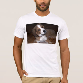 Rescue Dog Buddy Implores You T-Shirt
