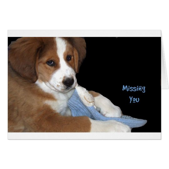 Rescue Dog Buddy: Missing You Card