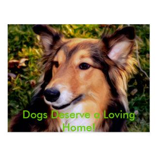 Rescue Dog Postcard