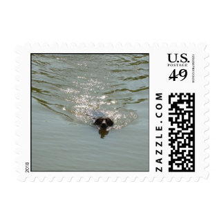 Rescue dogs stamps