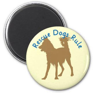 Rescue Dogs Rule v3 Fridge Magnets