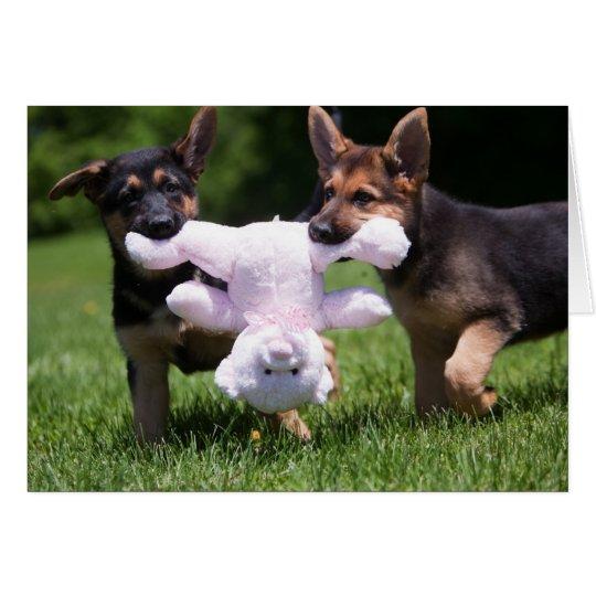 """Rescue Dogs """"Sammi"""" and """"Rilie"""" Card"""