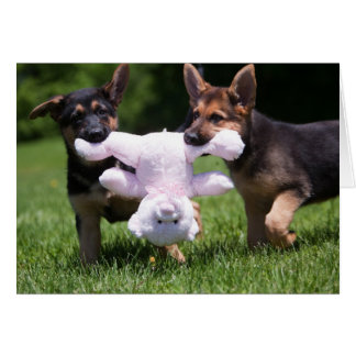 """Rescue Dogs """"Sammi"""" and """"Rilie"""" Stationery Note Card"""