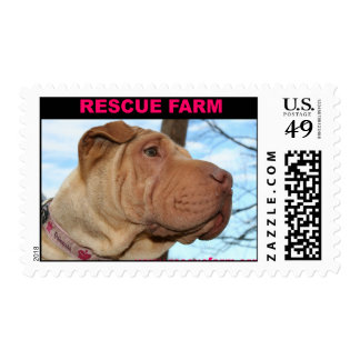 Rescue Farm Sharpei Stamp