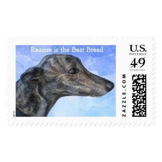 Rescue Greyhound Stamps