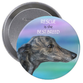 Rescue is the Best Breed Pins