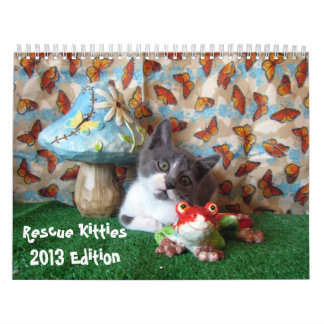 Rescue Kitties Calendar - New for 2013!