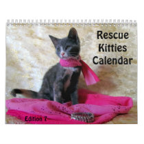 Rescue Kitty Calendar - Edition 7 (Orignl 2018)