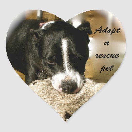 Rescue Pet Adoption Heart Sticker