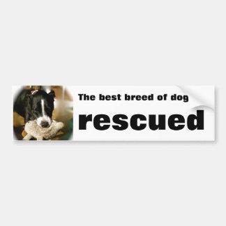 Rescue Pet Car Bumper Sticker